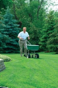 Organic Lawn Care Programs & Crabgrass Control- Maryland