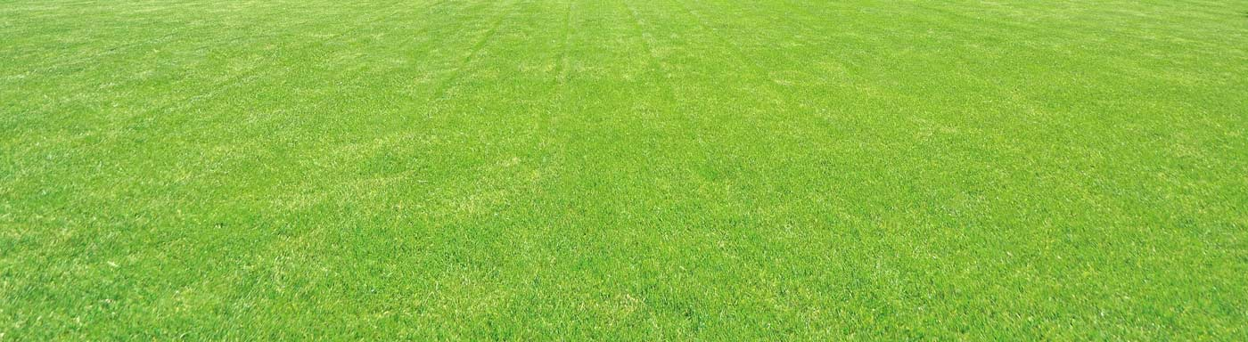 Cut Healthy Grass-Organic Lawn Care, Weed Control, and Crabgrass Control- Gaithersburg MD