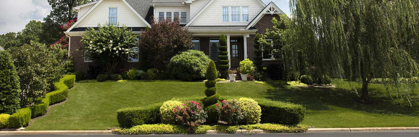 Tree Shrubs Organic Lawn Care, Weed Control, and Crabgrass Control- Montgomery County MD